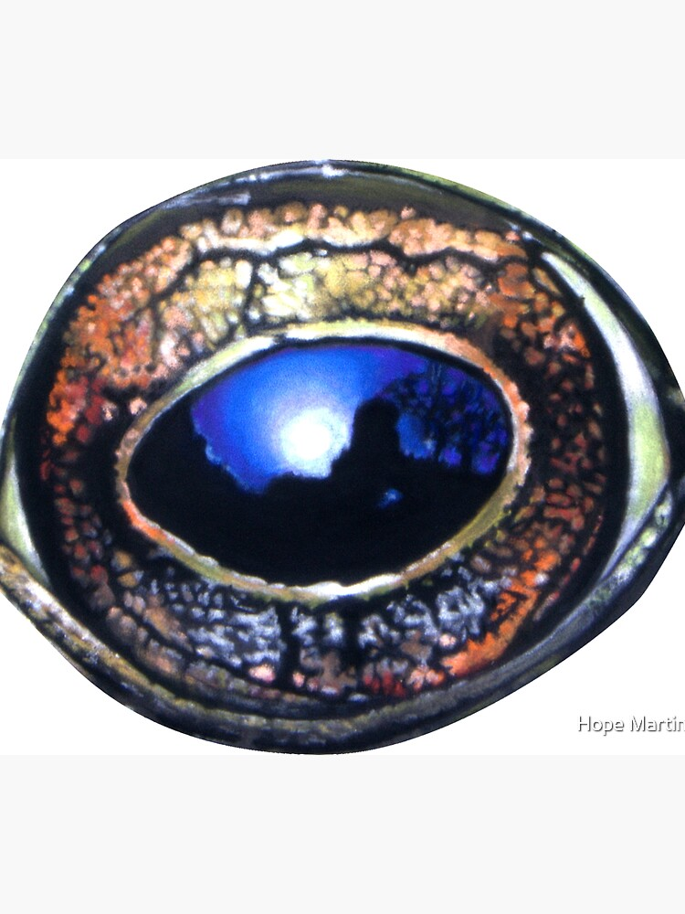 Reflections in a frog's eye by Hopemartinart