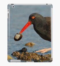A Clamcatching Black Oystercatcher iPad Case/Skin