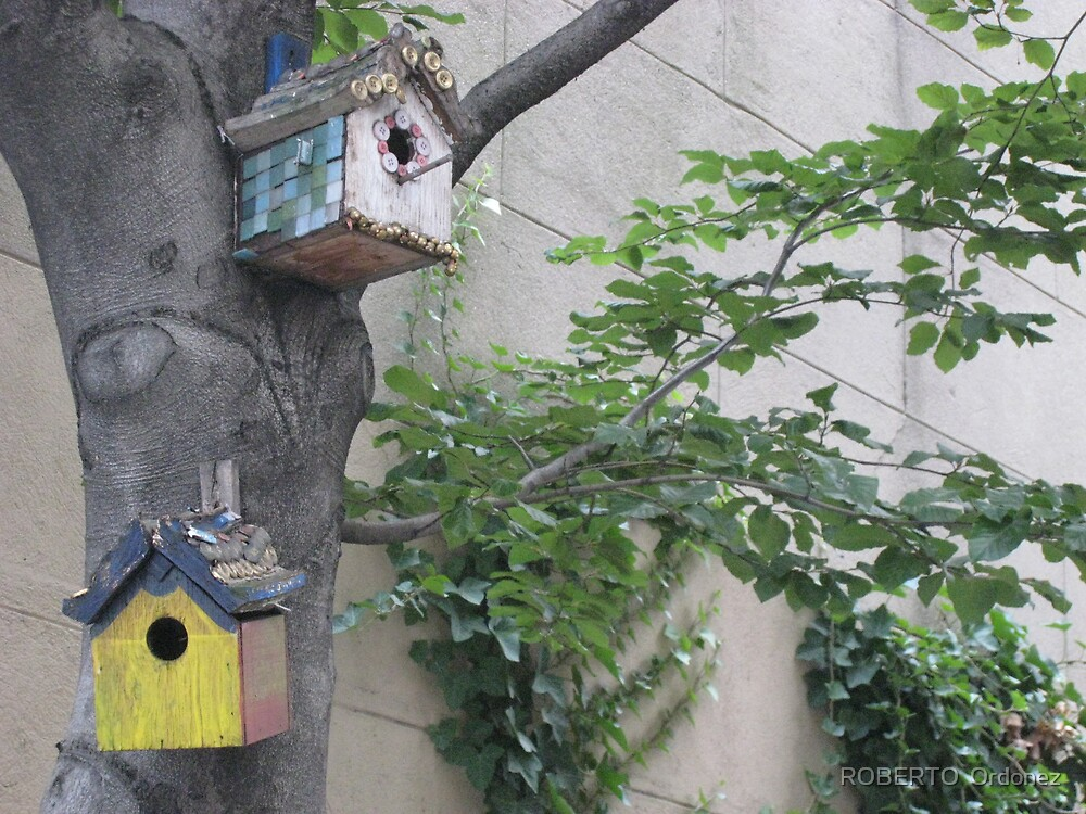 bird houses by BOBBYBABE