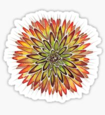 White Tipped Autumn Agave Sticker