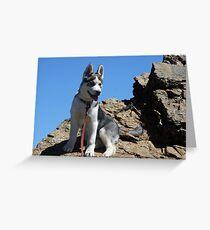 Bella on the Mountain above Farmington Canyon 3 Greeting Card