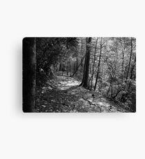 The Path To Serenity Canvas Print