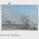 It Snowed Today by toots