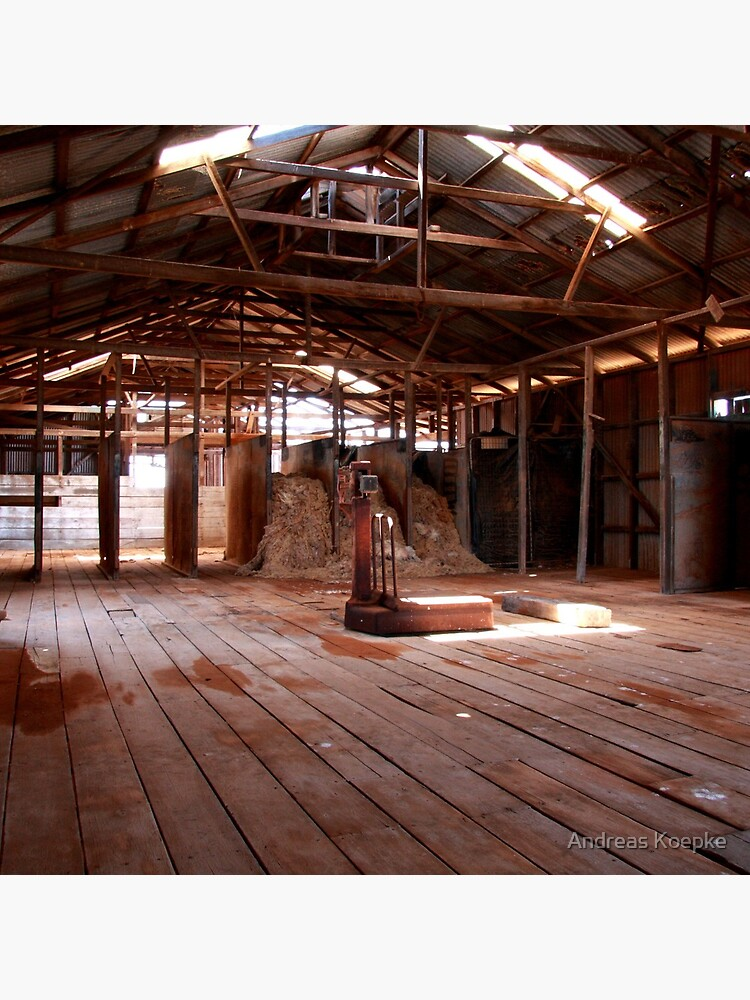 Old shearing shed by mistered