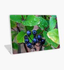 Black Berries........ Laptop Skin