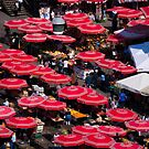 Dolan Market Umbrellas by Rae Tucker