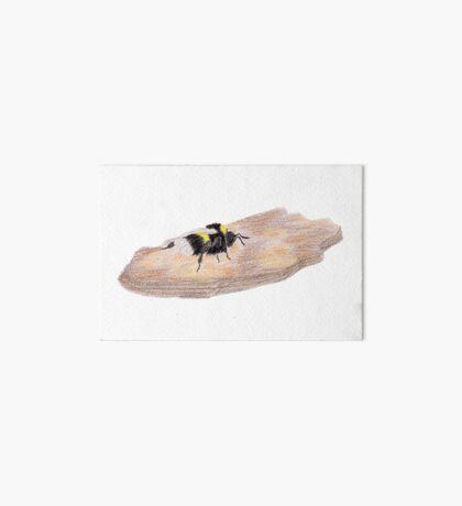Bumblebee on a piece of bark Art Board Print