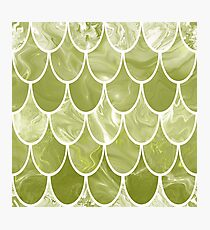 Green scales Photographic Print