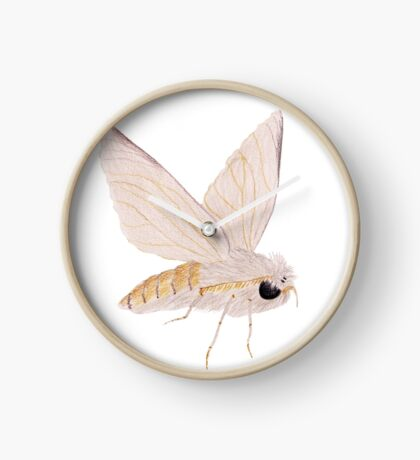Silk Moth Clock