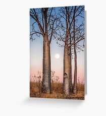 A Kimberley Moonrise Greeting Card