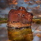 Excelsior Schipwreck by Jessy Willemse