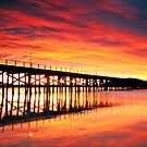Coffs Harbour Sunrise by Annette Blattman