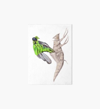 Dragonfly emerging Art Board Print