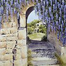 Wild about Wisteria by FranEvans
