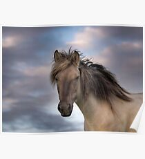 A horse with no name Poster