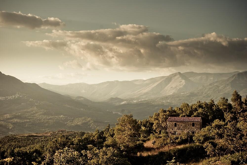 Landscape by settecplus
