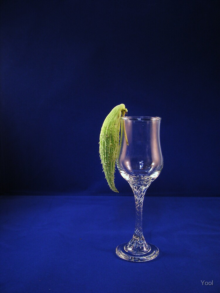 Parrotbud on glass... by Yool