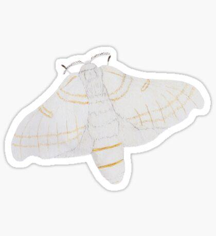 Silk moth from above Glossy Sticker