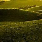 Green Folds by Caroline Gorka