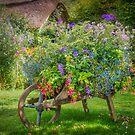 Gardener's Barrow by vivsworld