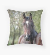 I was sold Throw Pillow