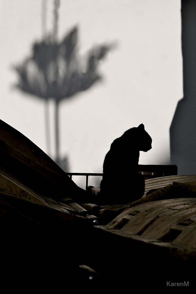 Cat and Shadows by KarenM