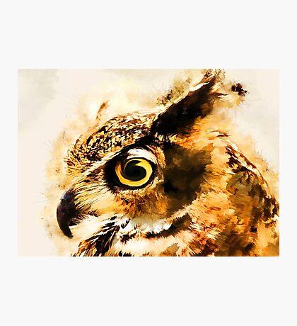 Owl art #owl #animals Photographic Print