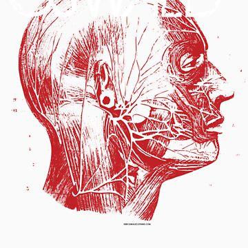 Oswald Head by oswaldclothing