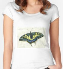 Swallowtail butterfly Women's Fitted Scoop T-Shirt