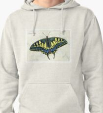 Swallowtail butterfly Pullover Hoodie