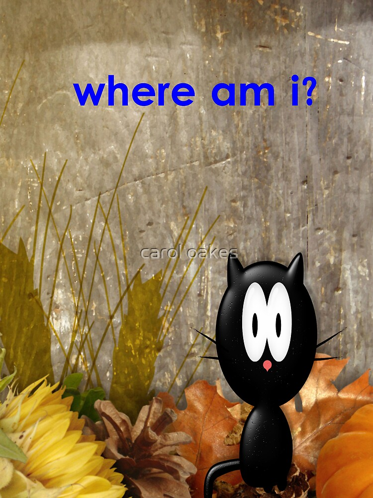 where am i? by carol oakes