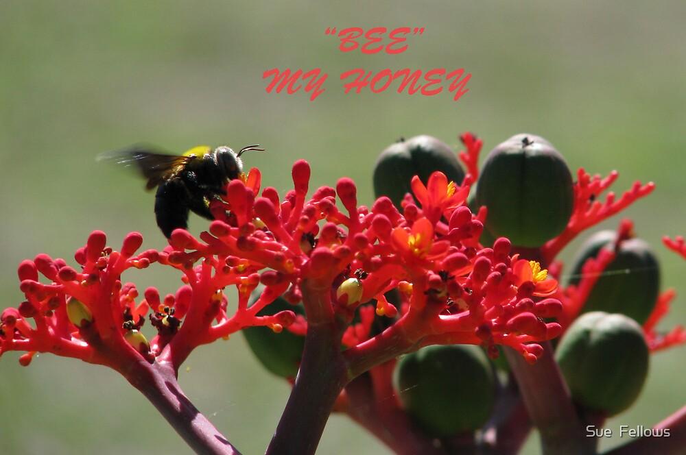 """Bee"" my Honey by Sue  Fellows"