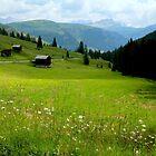Val Cordevole by annalisa bianchetti