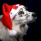 Happy Christmas by digitaldawn