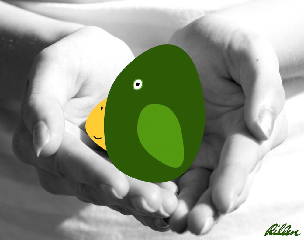 Bird in Hand …. by rillen