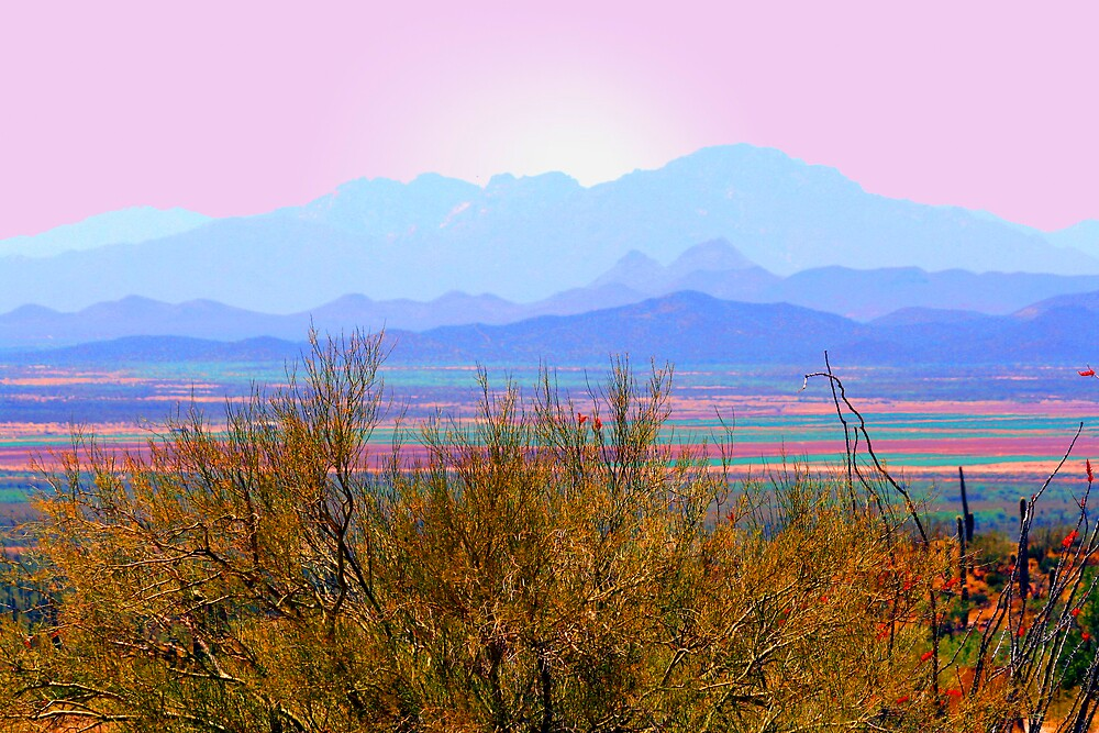 Tucson Mountains by noffi