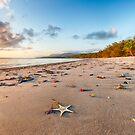 Port Douglas beach after sunrise by kraftyman