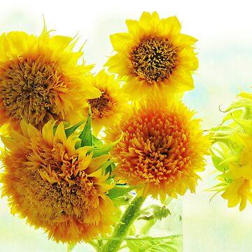 Sunflowers by biriart