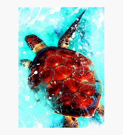 Turtle art #turtle #animal Photographic Print