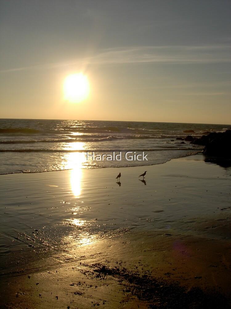 Kerala sunset by Harald Gick