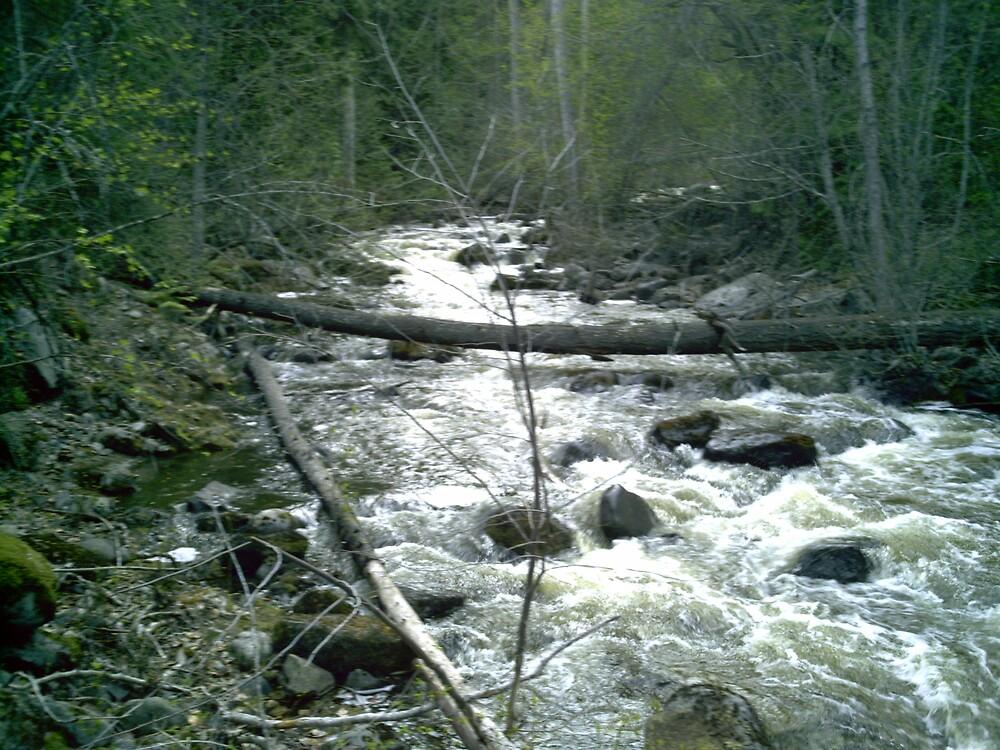 stream by richardthor