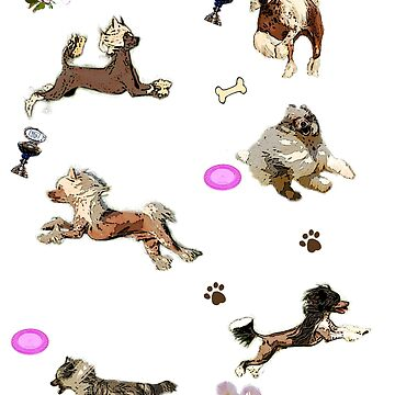 6 Chinese Crested Dogs by Batiste