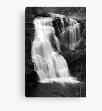 Bald River Falls III Canvas Print
