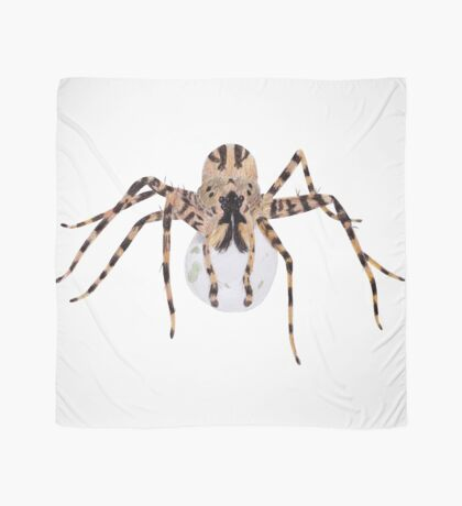 Spider with an Egg Sack Scarf