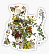 Pegatina Huesos y botánica