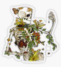 Pegatina transparente Huesos y Botánica