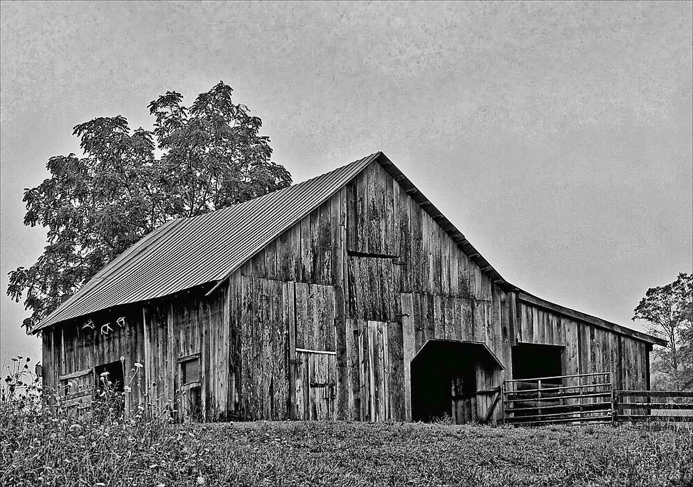 Old Barn by denise romano