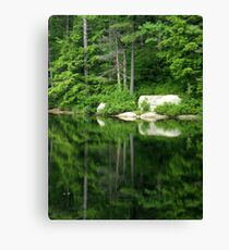 The Water Mirror Canvas Print