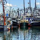 Fishing fleet at Coal Pocket Pier! by Poete100