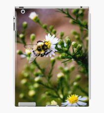 Bumble Bee On a Daisy iPad Case/Skin